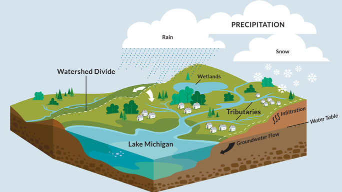 diagram showing how watersheds work